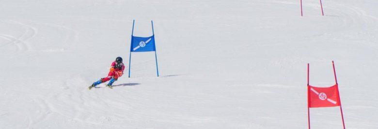 レーシングスキー