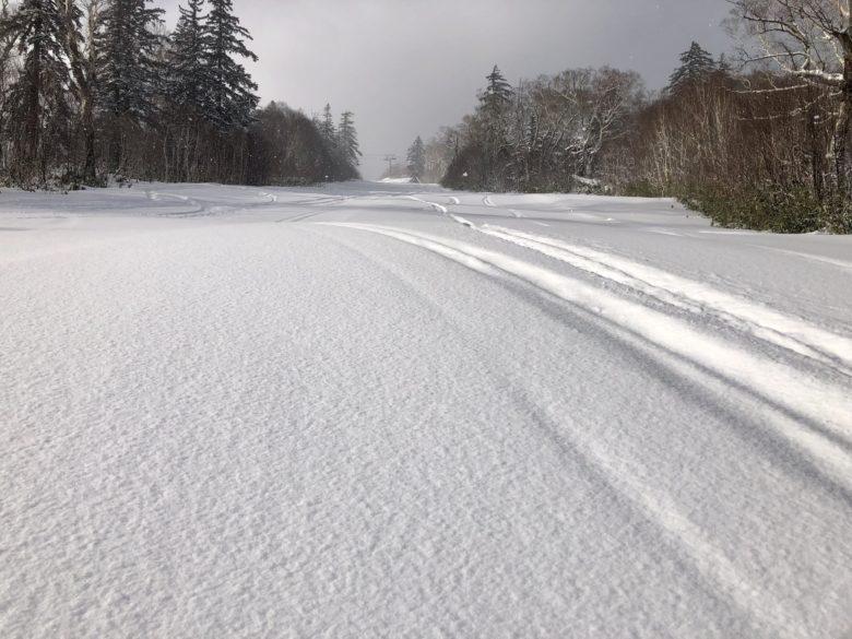 雪質は良好